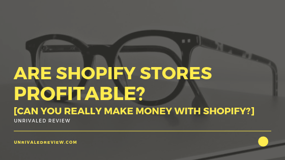 Are Shopify Stores Profitable? [Can You Really Make Money?]