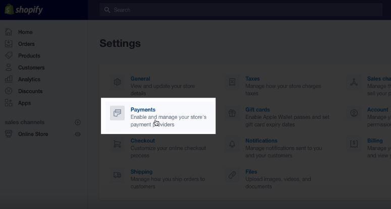 Shopify Payments Setup
